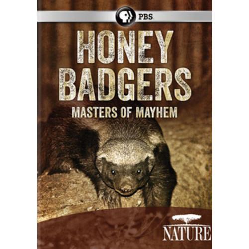 Nature: Honey Badgers - Masters of Mayhem (DVD)