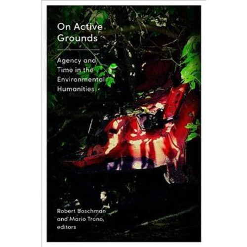 On Active Grounds : Agency and Time in the Environmental Humanities - (Paperback)