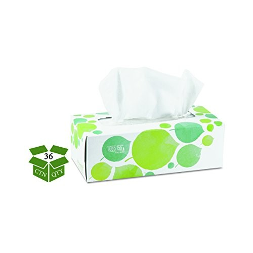 Seventh Generation 13712 100% Recycled Facial Tissue, 2-Ply, 175 per Box, White (Pack of 36)