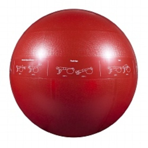GoFit 1200lb Professional Core Stability Ball 65 cm Red
