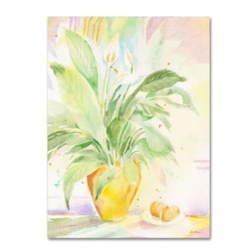 Trademark Fine Art 'The Peace Lily' 35