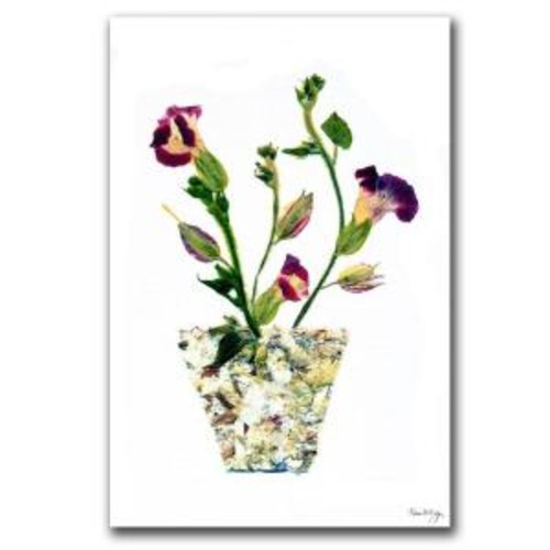 Trademark Fine Art 24 in. x 16 in. Pot of Wishes Canvas Art