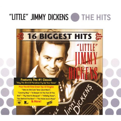 The Hits: 16 Biggest Hits [CD]