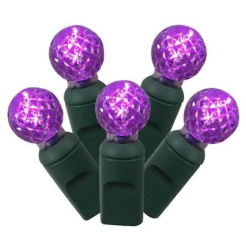 Vickerman 100 LED Light Set; Purple
